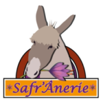 SAFR'Ânerie