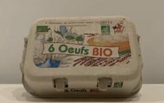 6 oeufs BIO