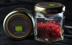 Safran biologique de Haute Provence