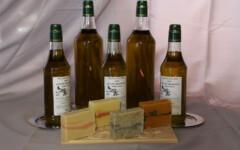 Huiles d'olive BIO - 1 litre - AOP Haute Provence - Aglandau mûre - Bouteillan - Cayon - Tanches ou Variétés Locales