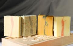 Savons - Shampoing à base d'huile d'olive BIO